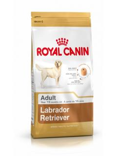 LABRADOR RETRIEVER ADULT 3Kg